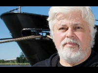 Sea Shepherd - Le capitaine Paul Watson lance un ...